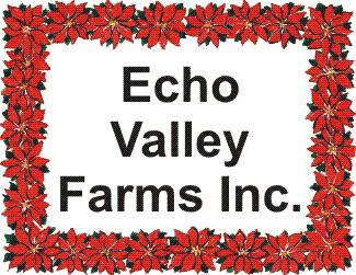 echo-valley