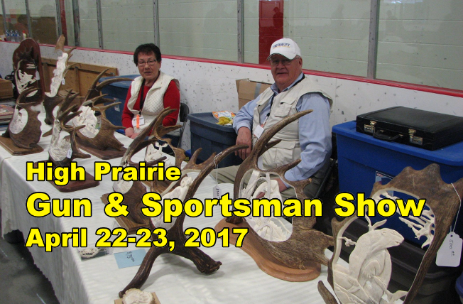 2017 Gun and Sportsman Show